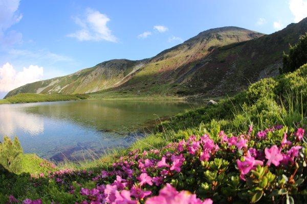 Lacul Lala Mare Muntii Rodnei